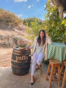 חברים, משפחה ויין – יקב יפו